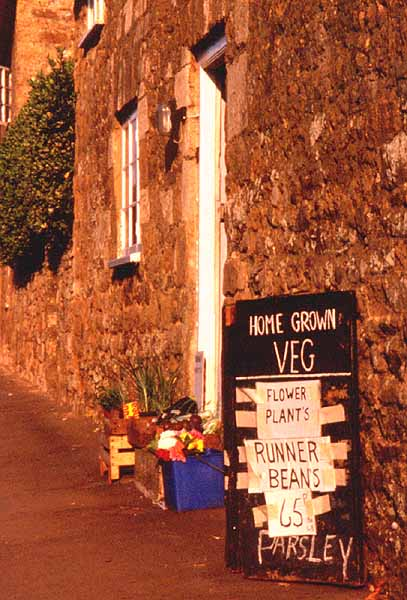 Abbotsbury - vegetables for sale, by Andrew Green