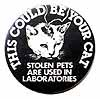 Stolen Pets are Used in Laboratories